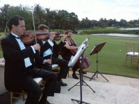 Tradewinds Wedding Strings